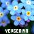 Jane - Yevgeniya